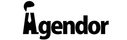 logo737